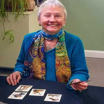 Connect with Spirit: Tarot Consultations with Ann Hentz*REMOTE SESSIONS ONLY*
