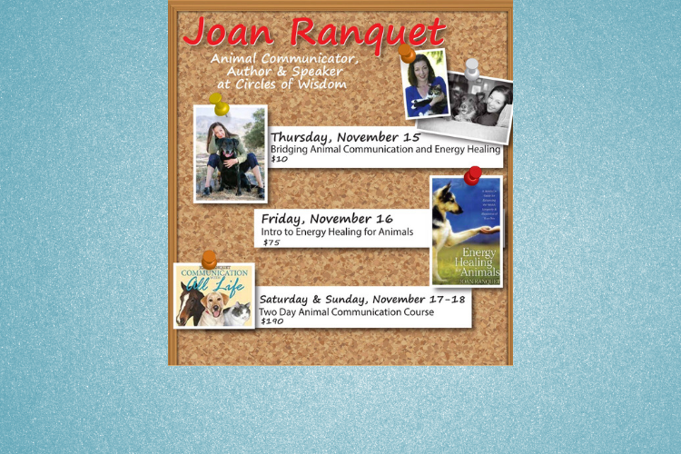 Animal Classes with Joan Ranquet