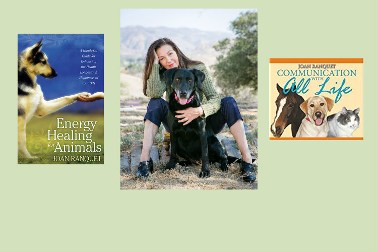 Animal Communication and Energy Healing with author Joan Ranquet