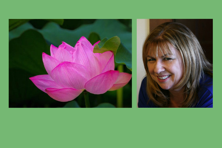 6-session Channeling Intensive with Julie Ann Gadziala